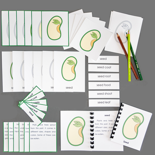Seed-Complete Nomenclature Set
