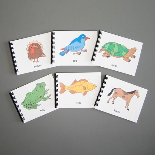 Zoology - Complete Nomenclature Set