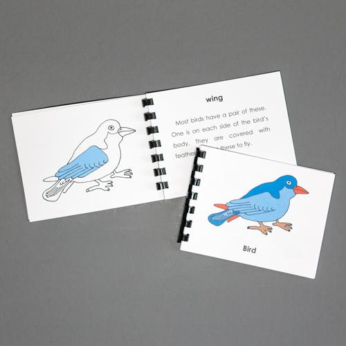 Bird-Definition Booklet