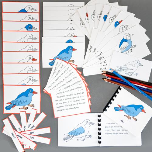 Bird-Complete Nomenclature Set