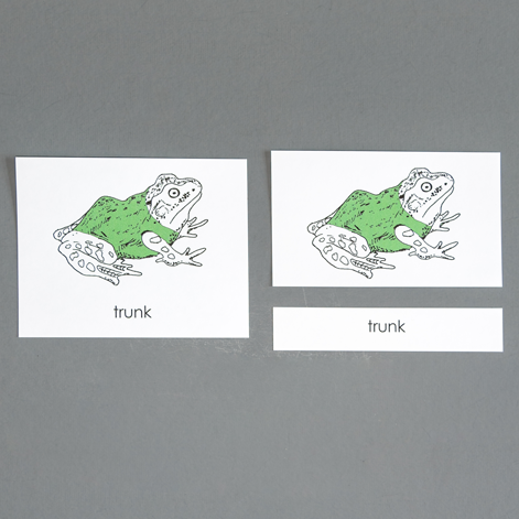 Frog-Three Part Cards