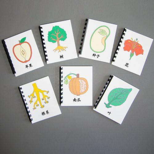 Chinese (Mandarin) Botany Complete Nomenclature Set