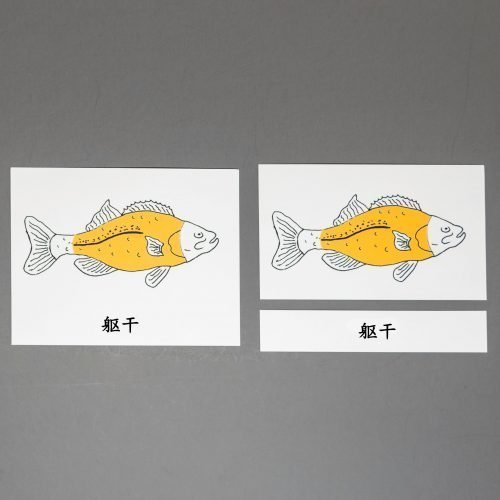 Chinese (Mandarin) Fish Three Part Cards