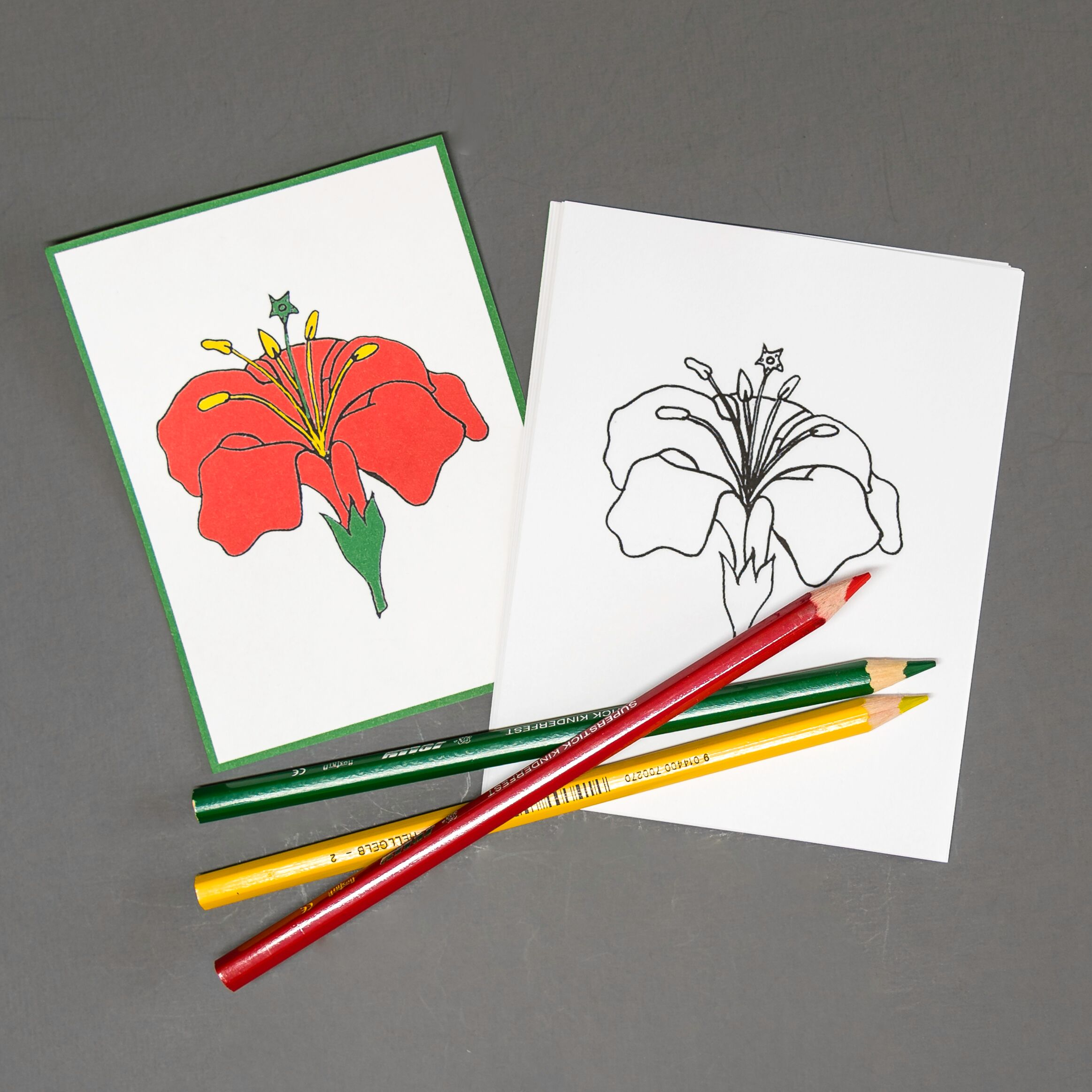 Chinese (Mandarin) Flower Coloring Page