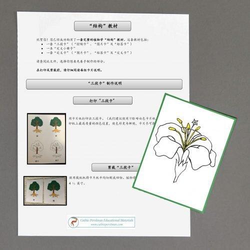 Chinese (Mandarin) Flower Directions