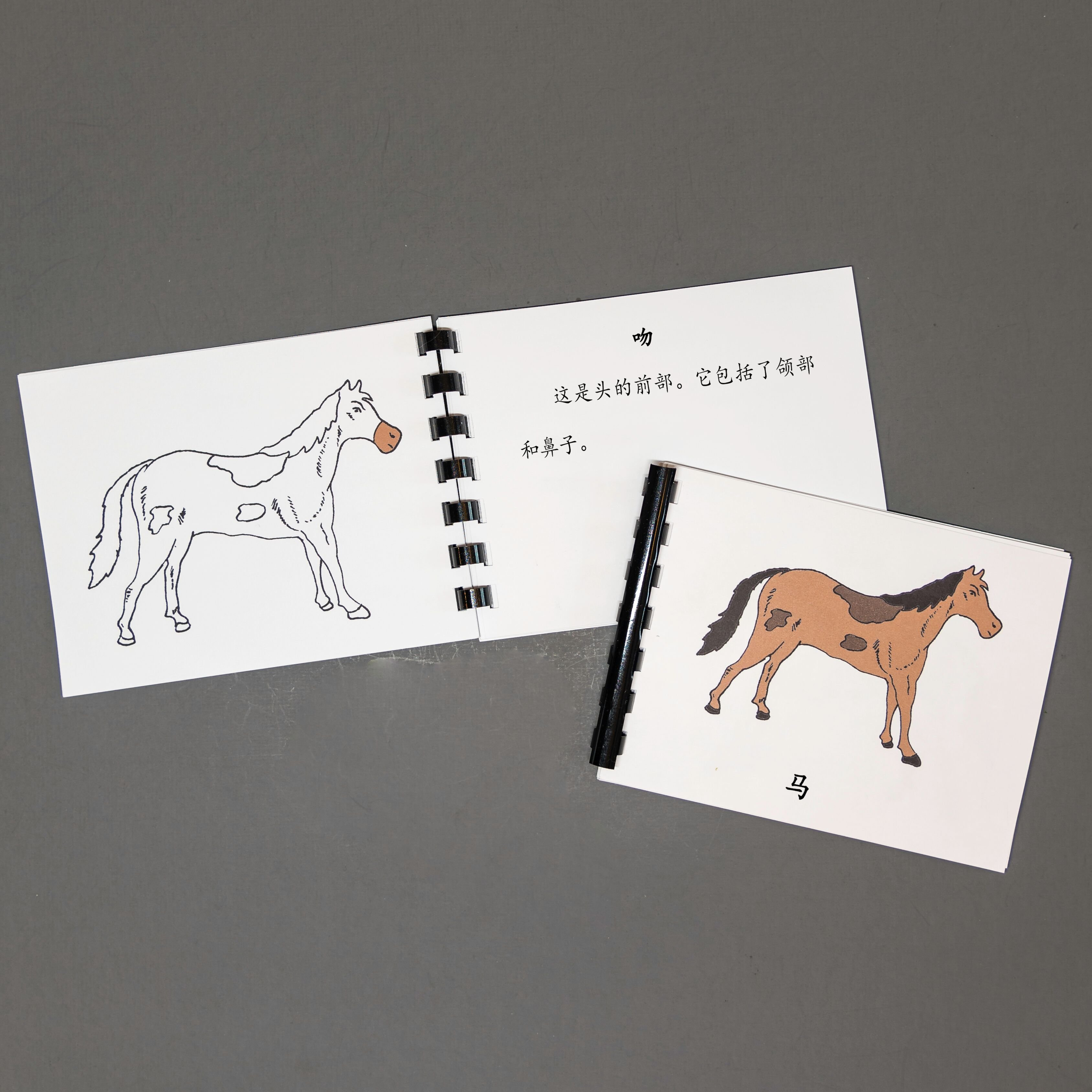 Chinese (Mandarin) Horse Definition Booklet