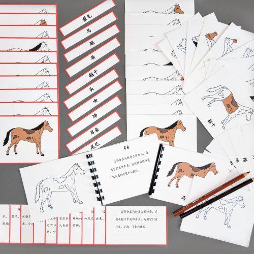 Chinese (Mandarin) Horse Whole Set