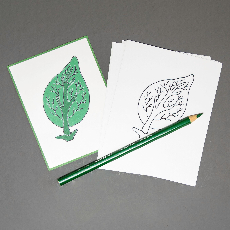 Chinese (Mandarin) Leaf Coloring Sheet