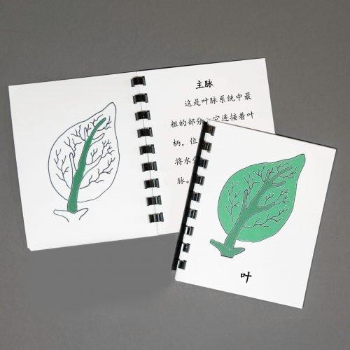 Chinese (Mandarin) Leaf Definition Booklet