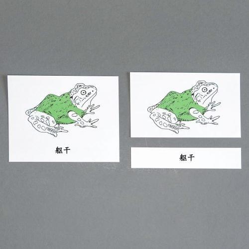 Chinese (Mandaring) Frog Three Part Cards