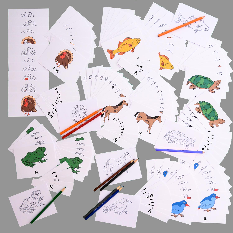 Mandarin Zoology 3 Part Cards Complete Set