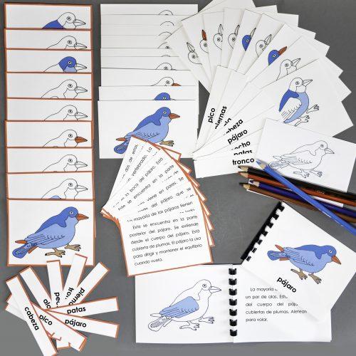 Spanish Bird Complete Set