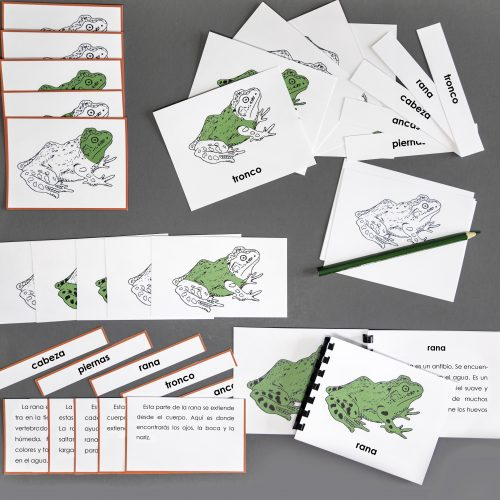 Spanish Frog Complete Set