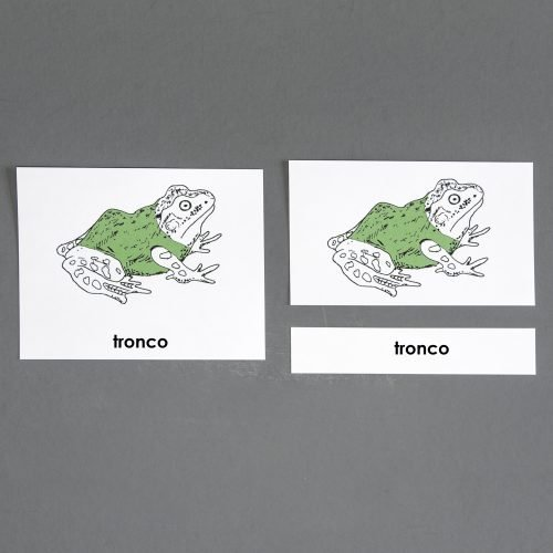 Spanish Frog Three Part Cards