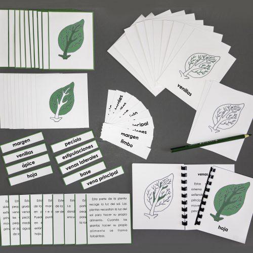 Spanish Leaf Complete Set