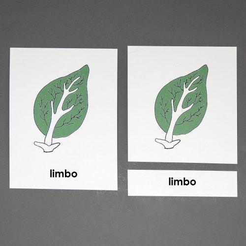 Spanish Leaf Three Part Cards