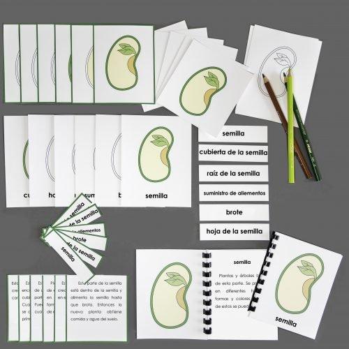 Spanish Seed Complete Set