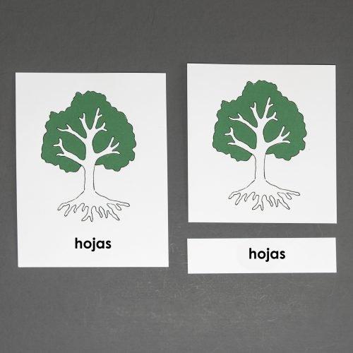 Spanish Tree Three Part Cards