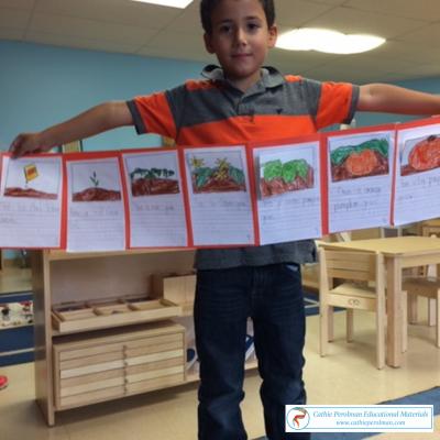 Pumpkin Seeds to Pie Sequencing